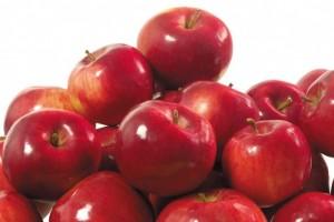 手づくり発酵ジュース教室【りんごとレモン 】午前の部 @ アティーバリビングフードアカデミー